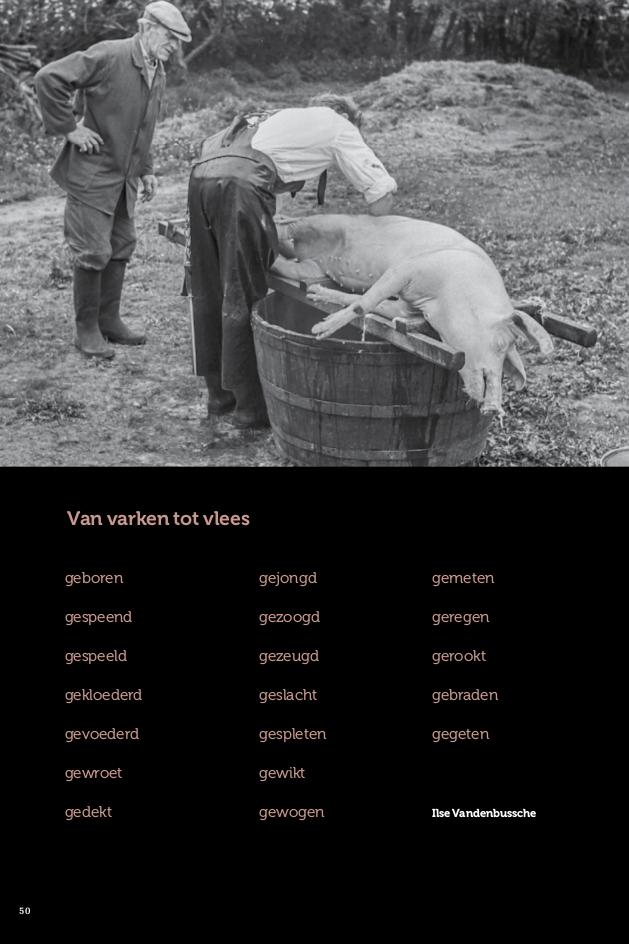 van varken tot vlees
